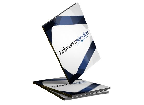 Erhvervsservice revisor services
